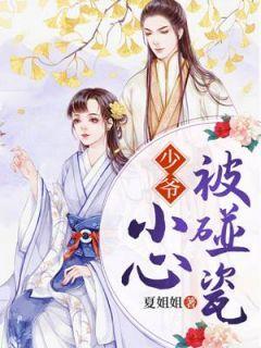 《少爷,小心被碰瓷!》小说章节在线阅读 殷碟姜晟小说全文