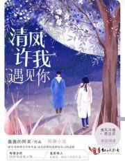 《清风许我遇见你》秦小齐杨飞全文免费阅读