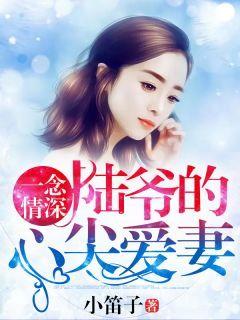 张雨欣陆海宁《一念情深:陆爷的心尖爱妻》全文及大结局精彩试读