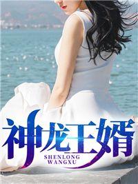 《神龙王婿》小说章节列表精彩试读 林峰叶紫凝小说全文